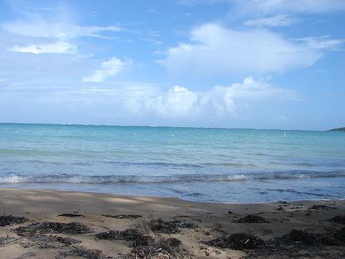 fajardo-seven-seas